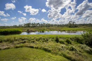 Ibis Golf And Country Club - The Preserv