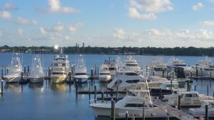 Old Port Cove - Marina Tower