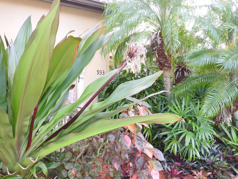 THE VINEYARDS PORT SAINT LUCIE FLORIDA