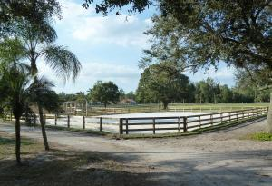 13260 COLLECTING CANAL ROAD, LOXAHATCHEE GROVES, FL 33470  Photo 5