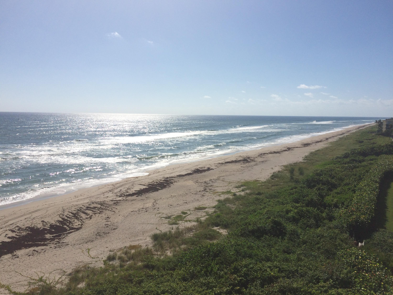 JUNO BY THE SEA JUNO BEACH REAL ESTATE