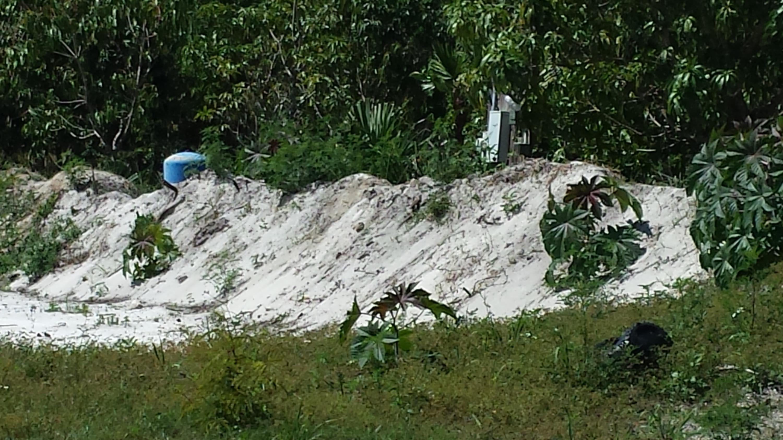 13312 48th Court Royal Palm Beach, FL 33411 photo 4