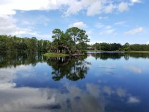 20000  Mack Dairy Rd Road , Jupiter FL 33478 is listed for sale as MLS Listing RX-10478291 photo #9
