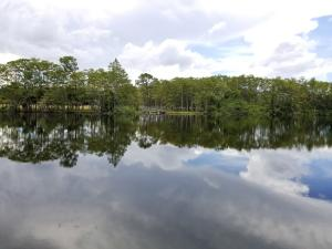 20000  Mack Dairy Rd Road , Jupiter FL 33478 is listed for sale as MLS Listing RX-10478291 photo #10