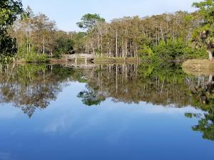 20000  Mack Dairy Rd Road , Jupiter FL 33478 is listed for sale as MLS Listing RX-10478291 photo #18