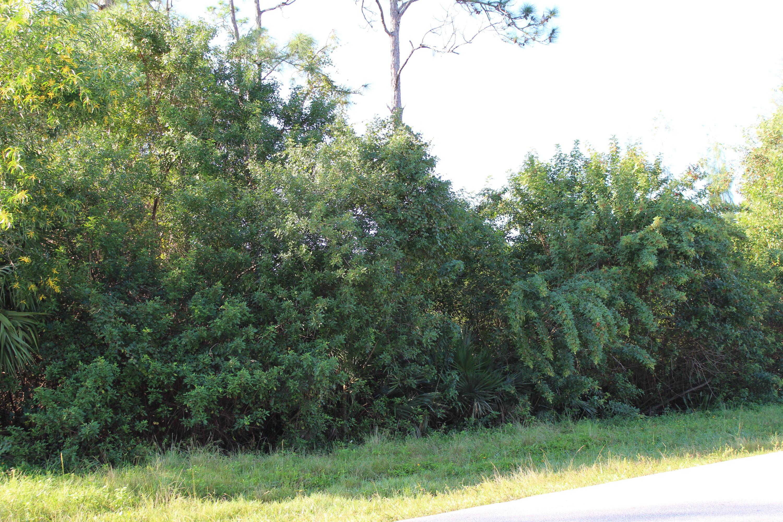 12523 Hamlin Boulevard Royal Palm Beach, FL 33412 photo 6