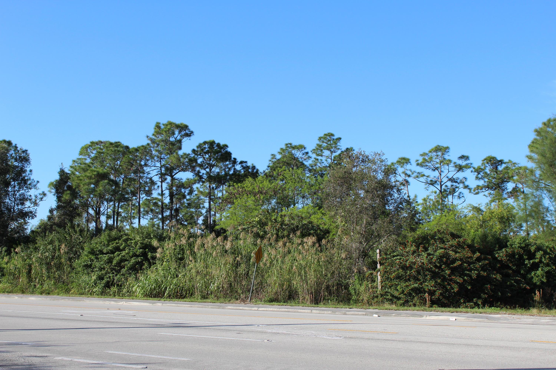12523 Hamlin Boulevard Royal Palm Beach, FL 33412 photo 7