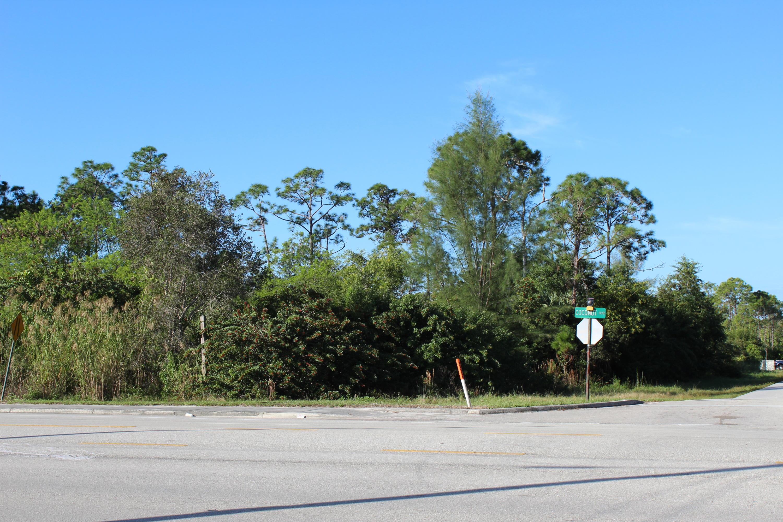12523 Hamlin Boulevard Royal Palm Beach, FL 33412 photo 5