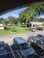 Palm Greens 1