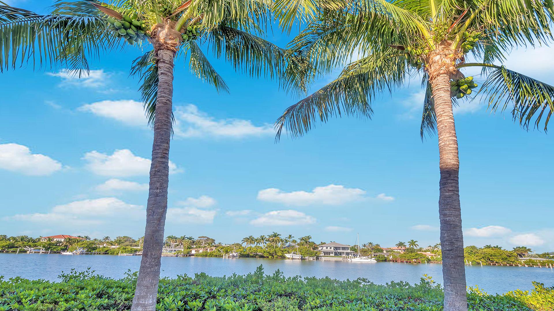 3555 S Ocean Boulevard 511 South Palm Beach, FL 33480 photo 25
