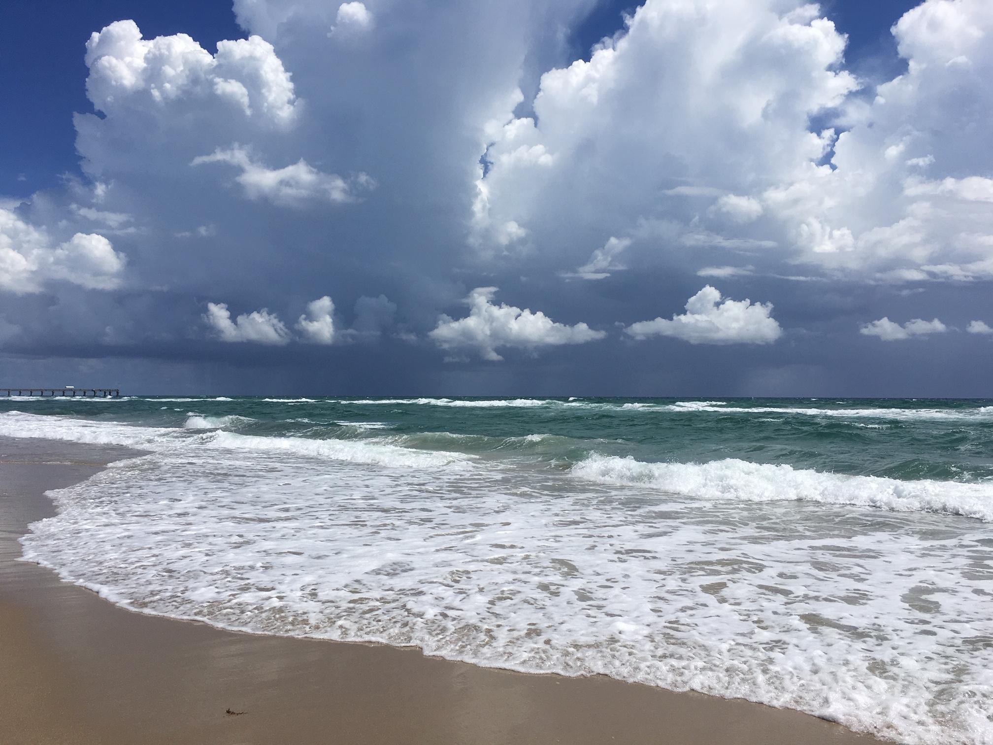 HALCYON PALM BEACH FLORIDA