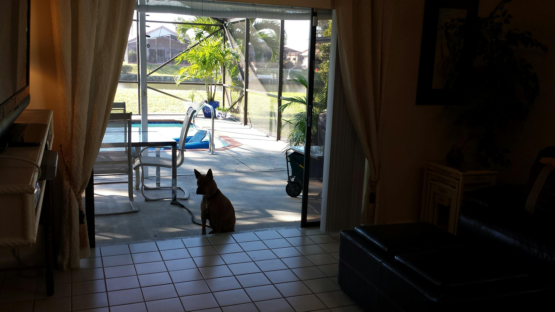 146 Parkwood Drive Royal Palm Beach, FL 33411 photo 10
