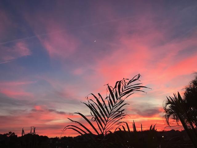 8711 S San Andros West Palm Beach, FL 33411 photo 31