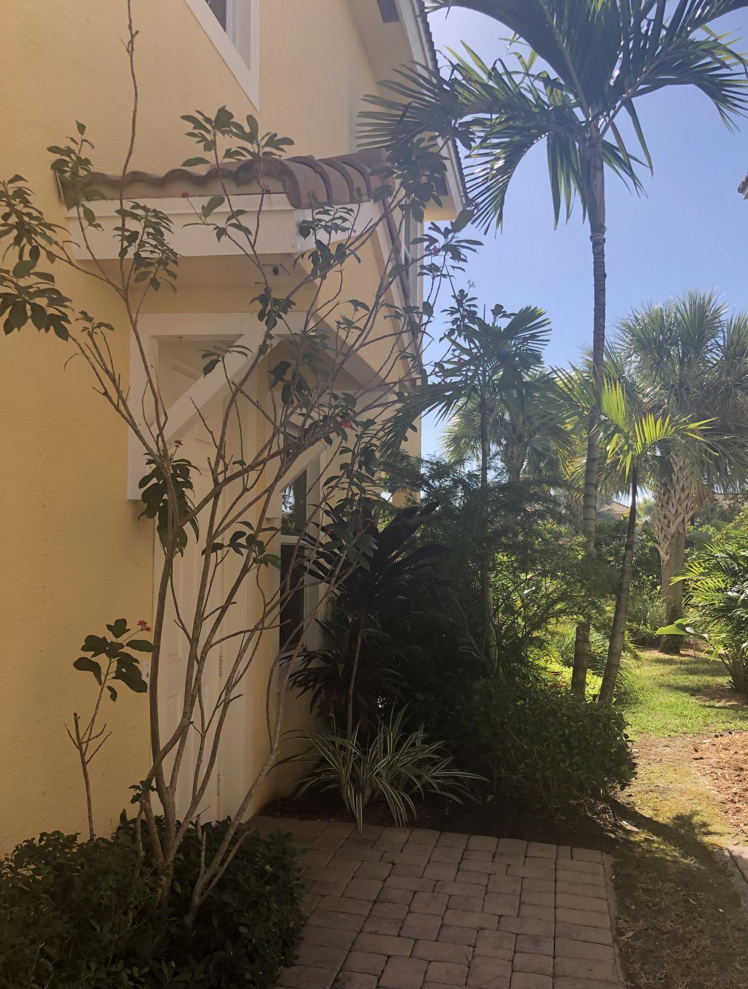 PALOMA HOMES