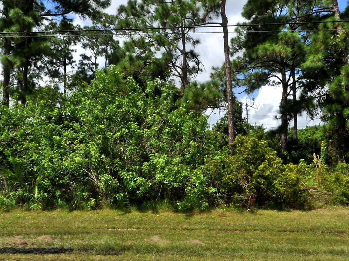 3642 Savona Boulevard, Port Saint Lucie, Florida 34953, ,C,Single family,Savona,RX-10498632