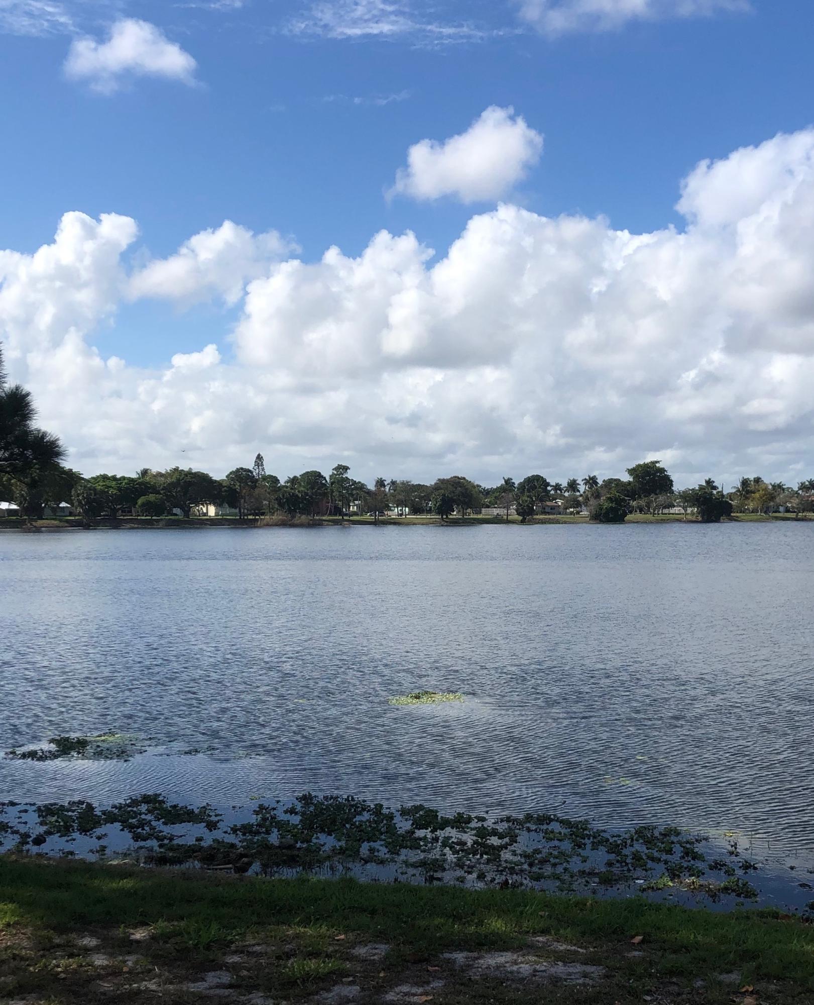 702 Wright Drive Lake Worth, FL 33461 photo 24