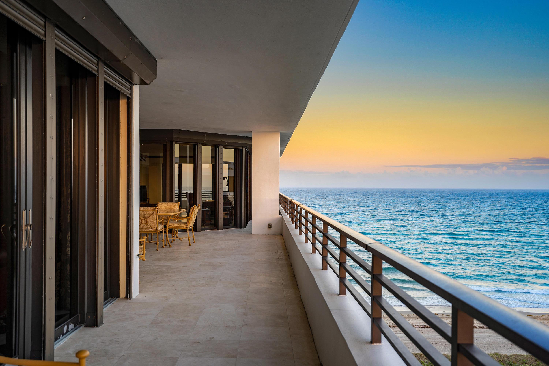 PALM BEACH REALTOR