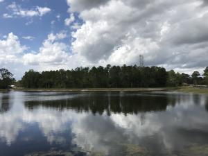 Caloosa
