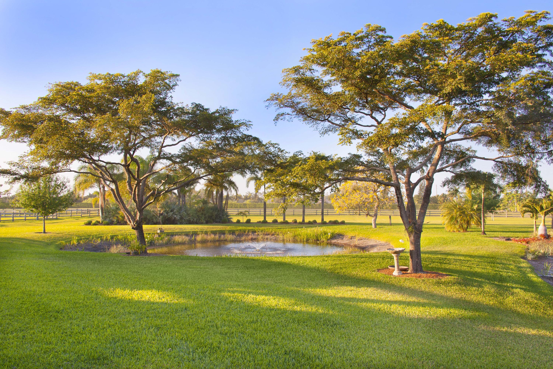 Kismayo_Pond