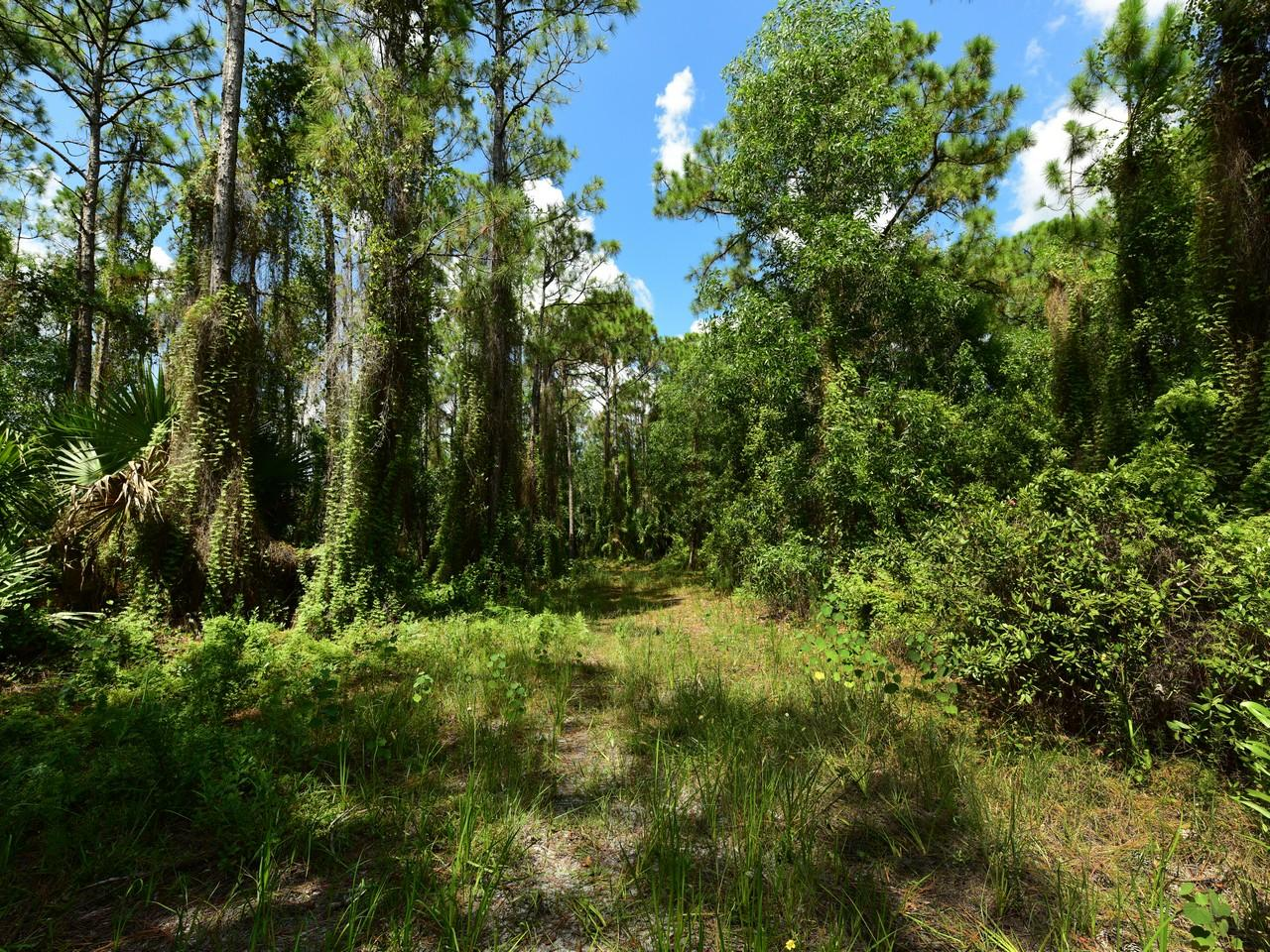 Home for sale in Ranch Colony - Ranch Acres Jupiter Florida