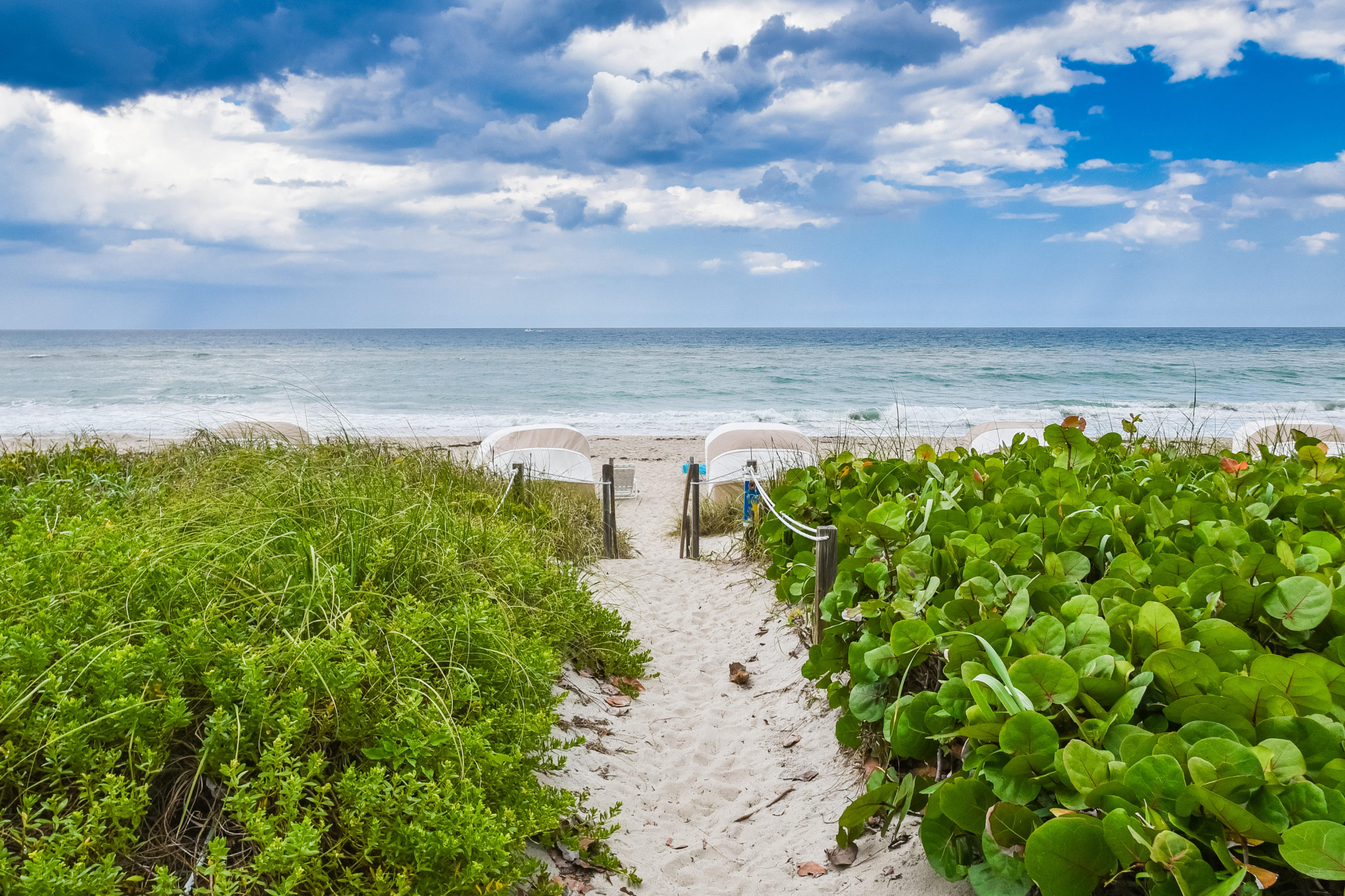 BEACH POINT HOMES FOR SALE