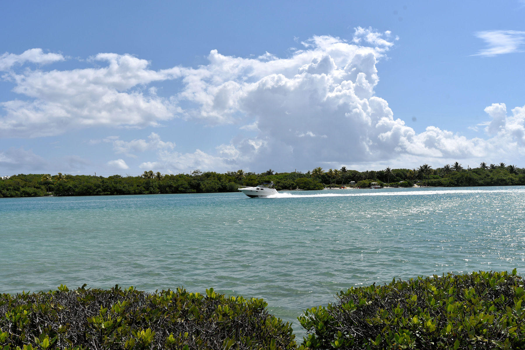 WATERWAY BEACH CONDOS REALTY