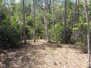 Loxahatchee, The Acreage, Royal Palm Acr