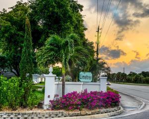 1743 Palmland Drive Boynton Beach 33436 - photo