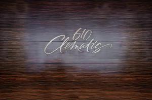 610 Clematis Condo