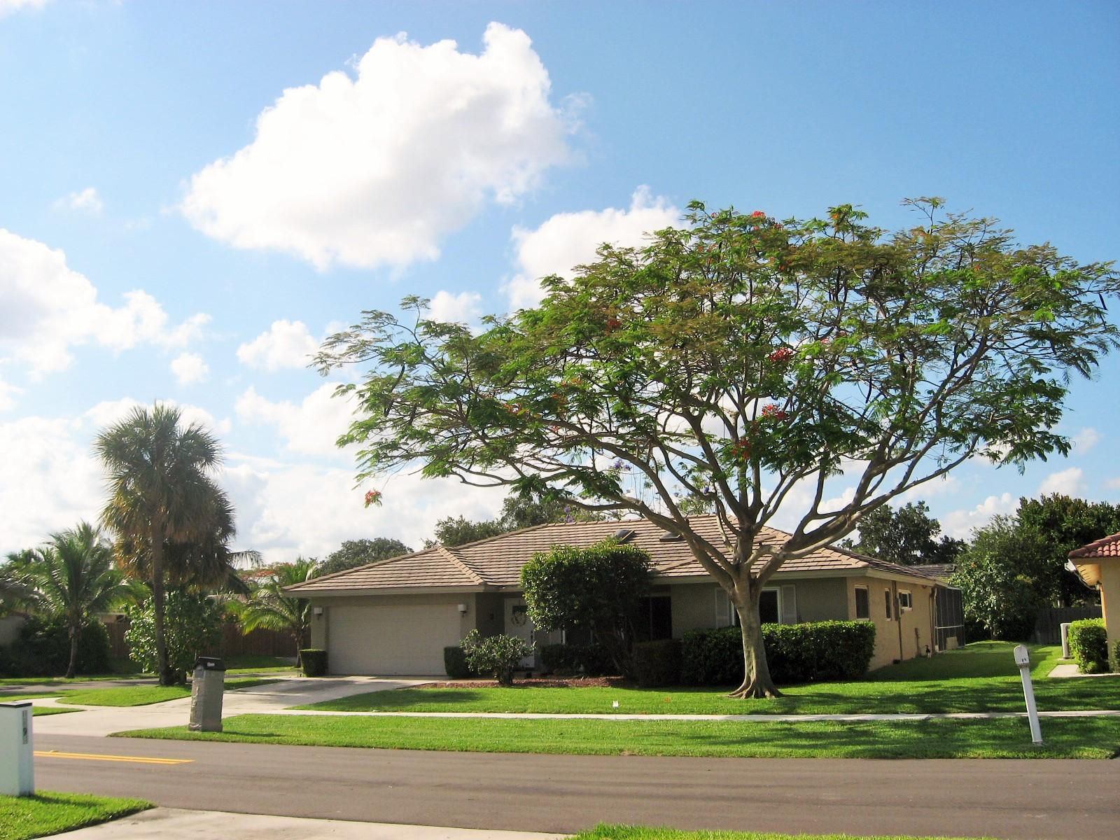 1399 SW 20th Street  Boca Raton FL 33486