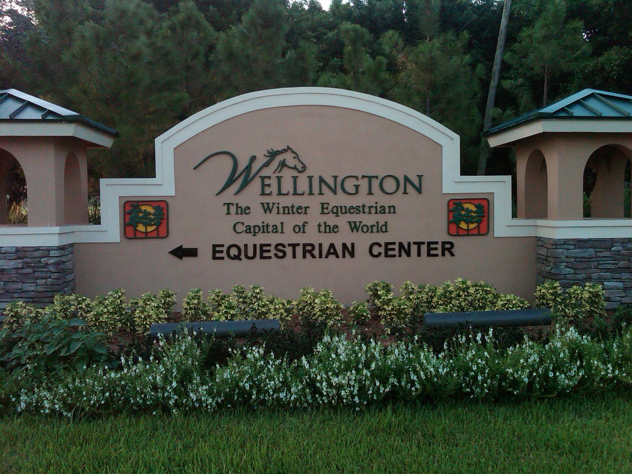 10453 Pisa Road Wellington, FL 33414 photo 56