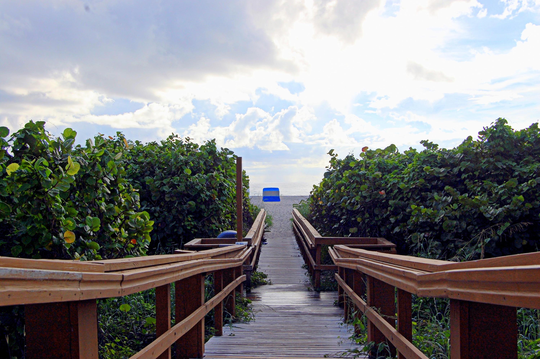 3000 North Ocean Drive 27-C Singer Island, FL 33404 photo 50