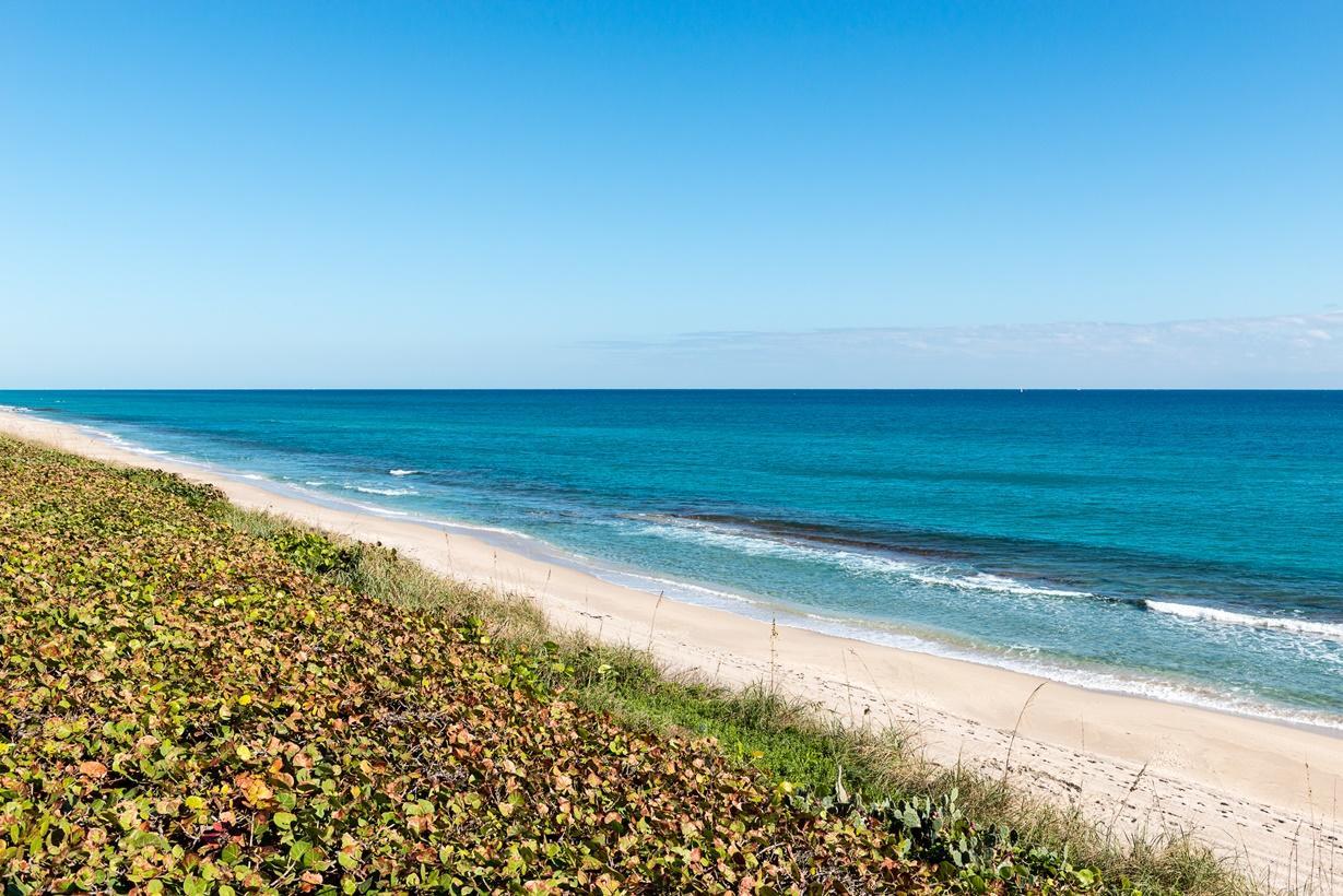 SLOANS CURVE PALM BEACH