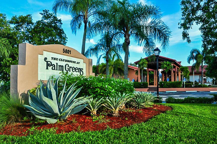 PALM GREENS REALTOR