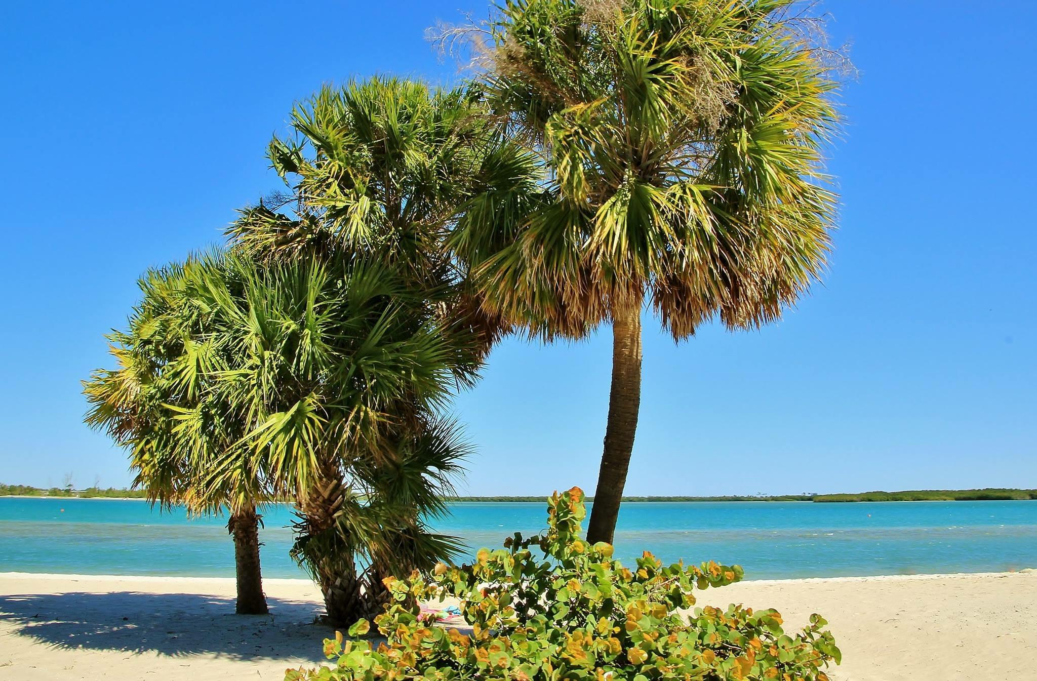 FORT PIERCE HOMES FOR SALE