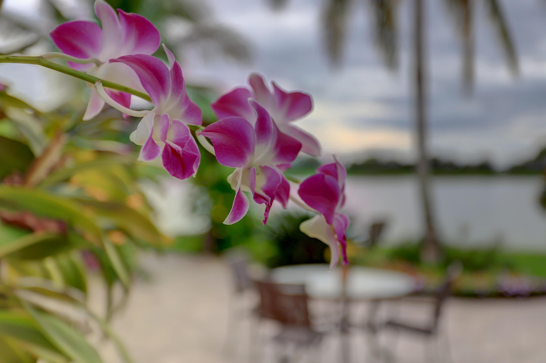 2165 Vero Beach Lane West Palm Beach, FL 33411 photo 34