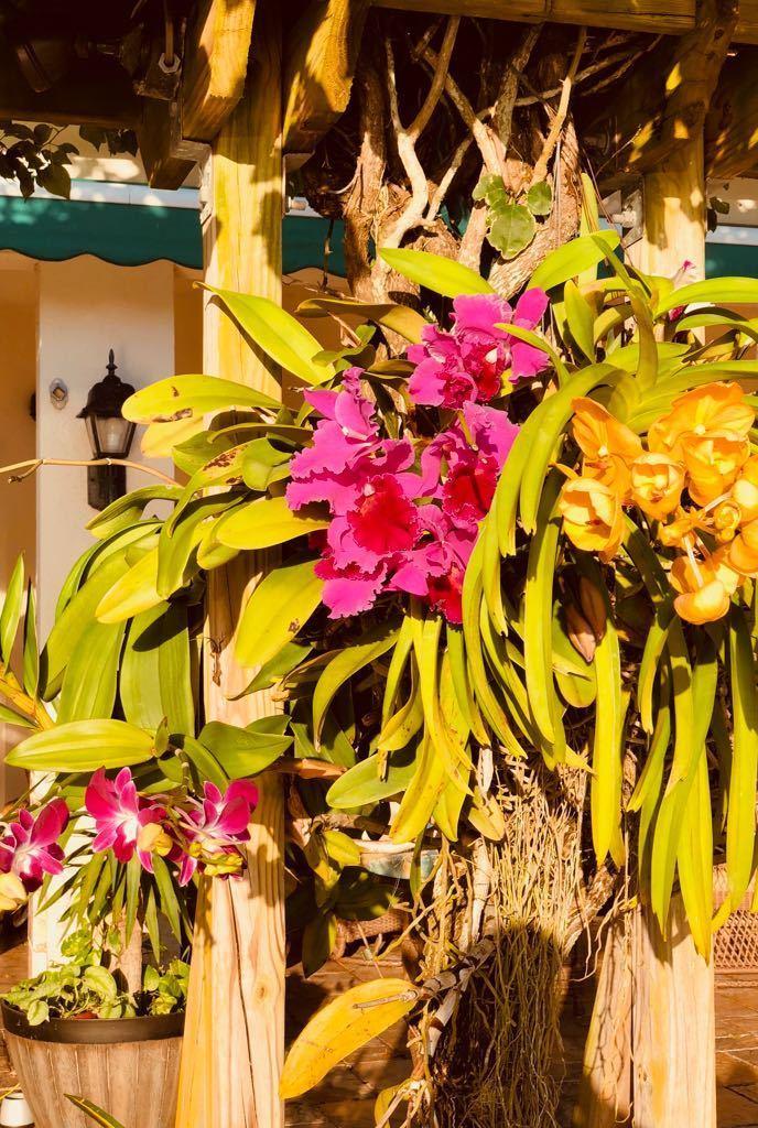 2165 Vero Beach Lane West Palm Beach, FL 33411 photo 37
