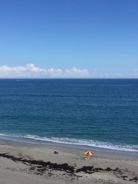 812 Bay Colony Drive 812 Juno Beach, FL 33408 photo 33