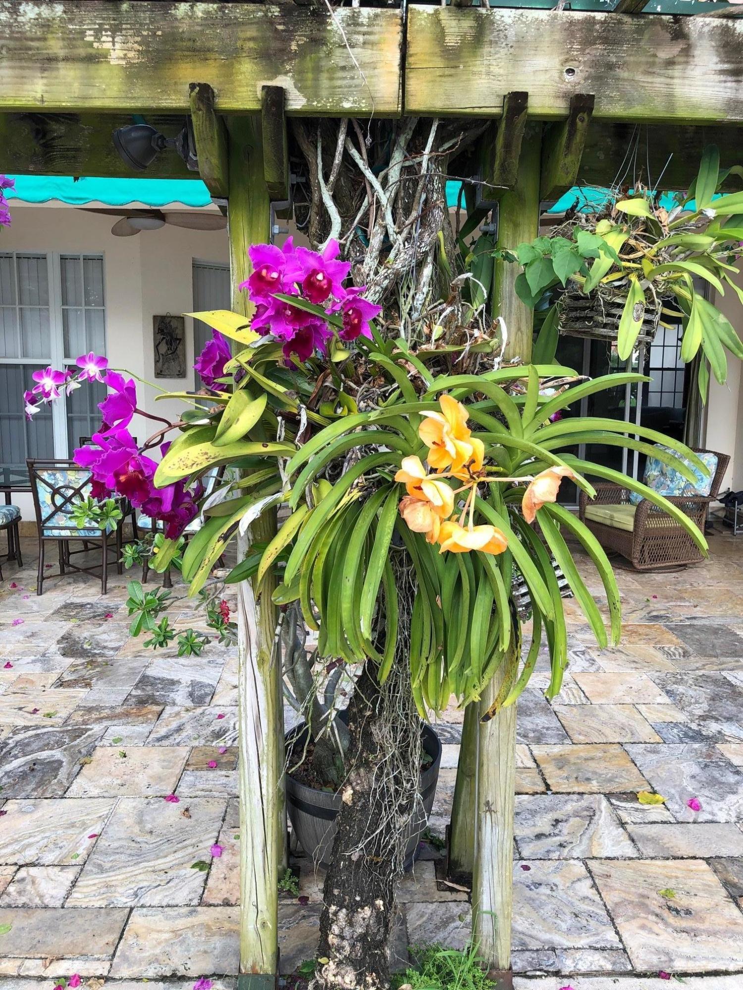 2165 Vero Beach Lane West Palm Beach, FL 33411 photo 23