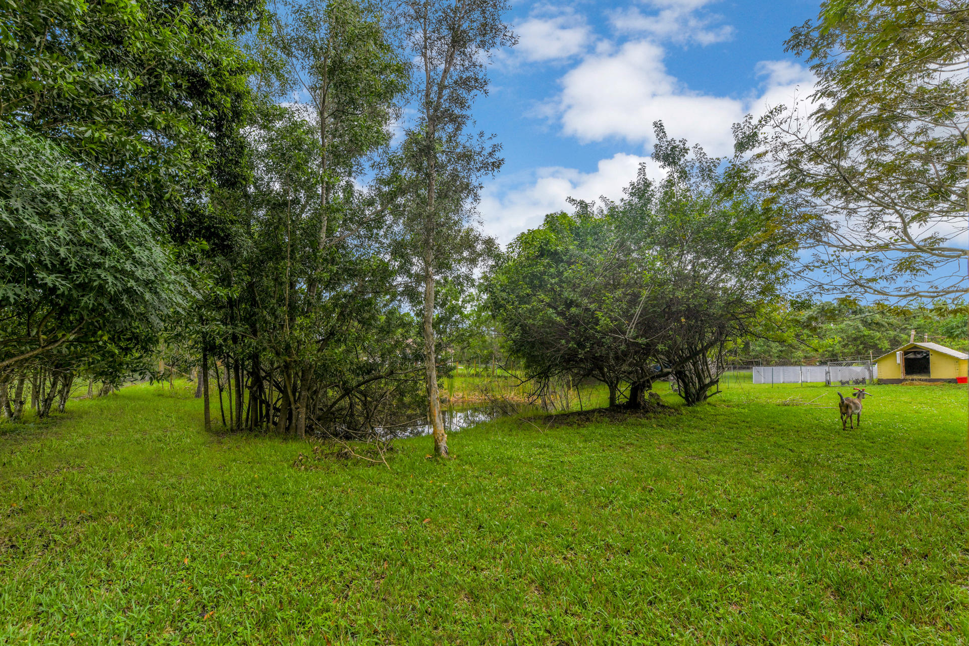 16893 81st Lane Loxahatchee, FL 33470 photo 18
