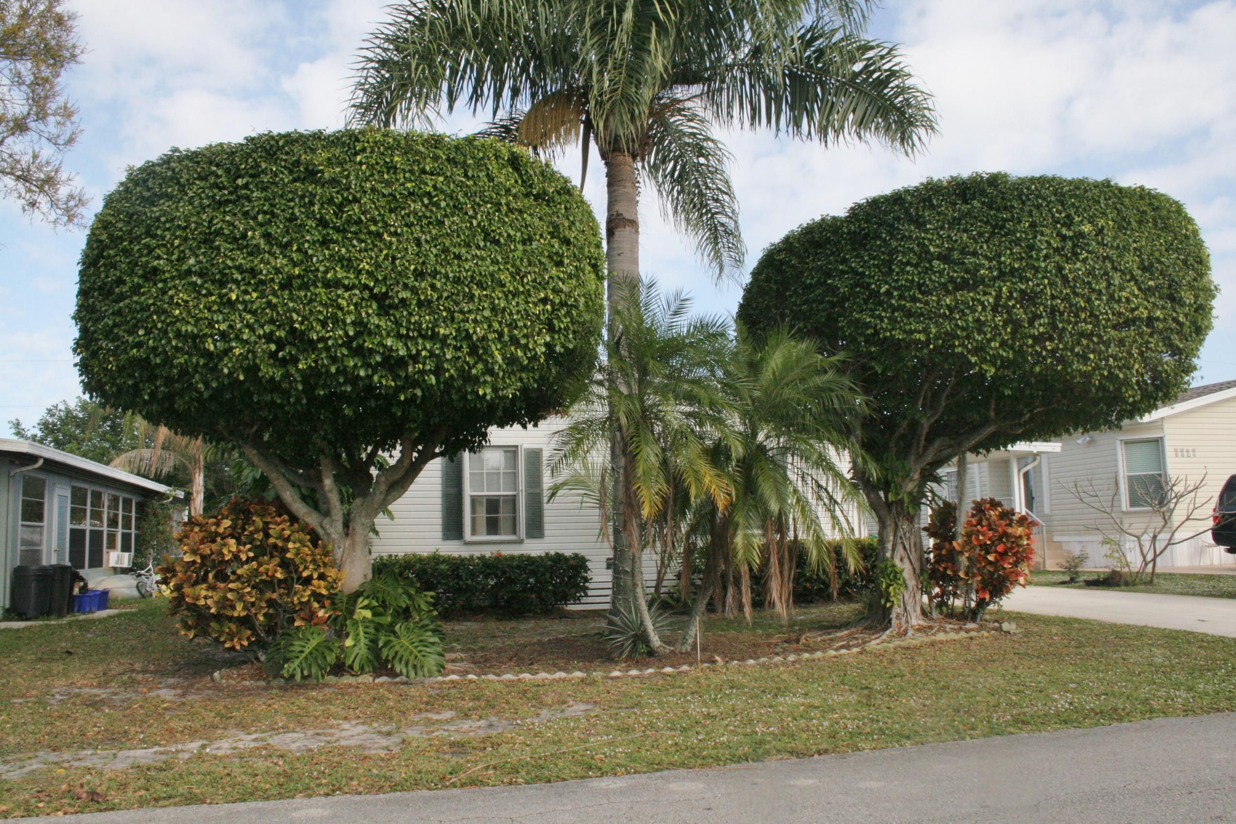 7717 SE Swan Avenue Hobe Sound, FL 33455 photo 30