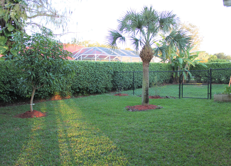 117 Kapok Crescent Royal Palm Beach, FL 33411 photo 9