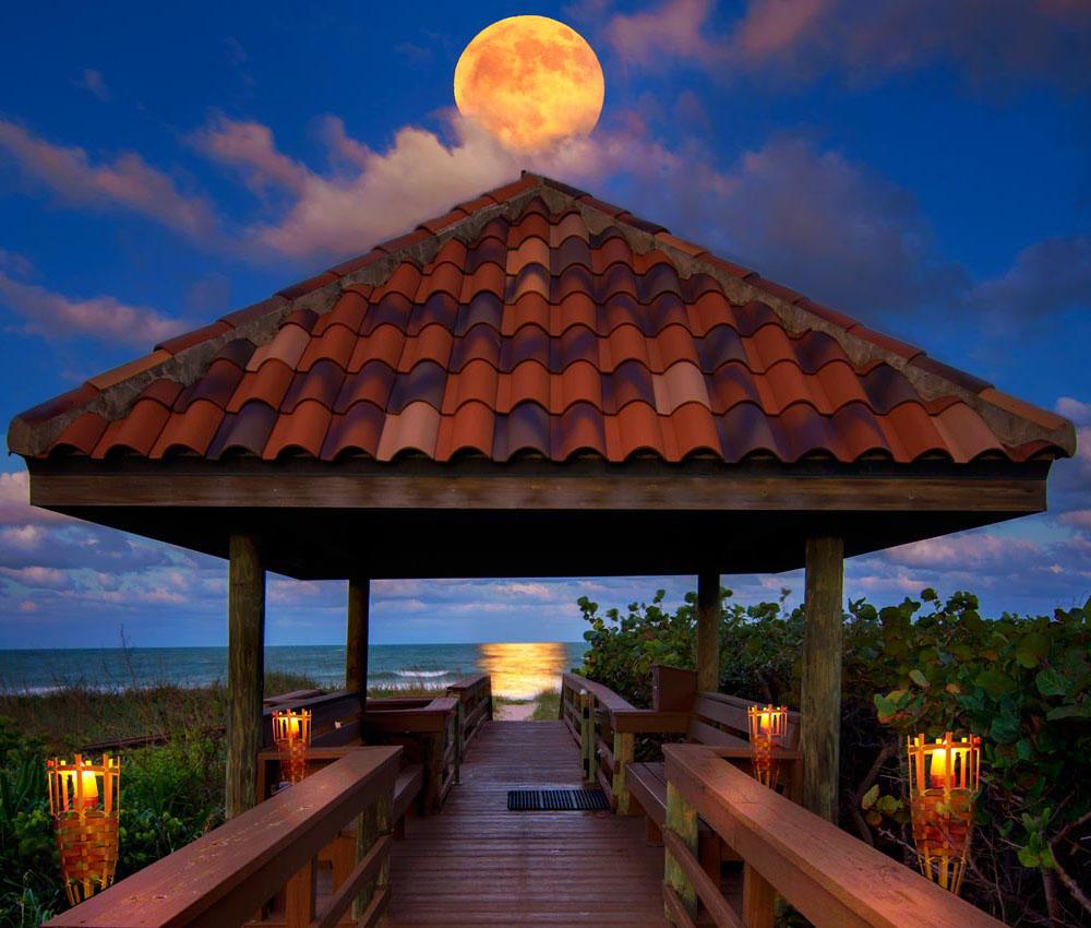 Home for sale in ALTAMIRA AT N HUTCHINSON ISLAND, A CONDOMINIUM Hutchinson Island Florida