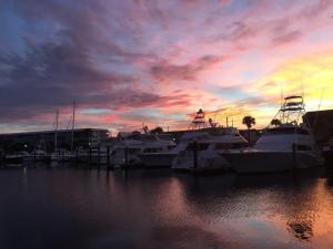 29  Yacht Club Drive 505 For Sale 10599639, FL