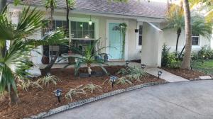 Tropic Palms 2