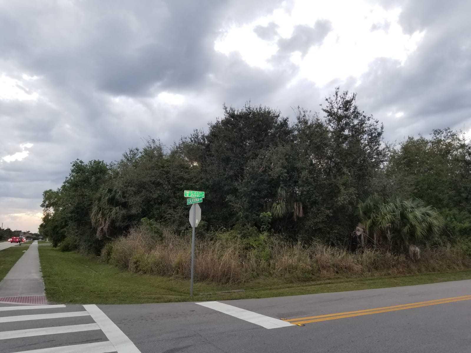 0 California Sw Boulevard, Port Saint Lucie, Florida 34953, ,Land/Docks,for Sale,California Sw,RX-10604807, , , ,for Sale
