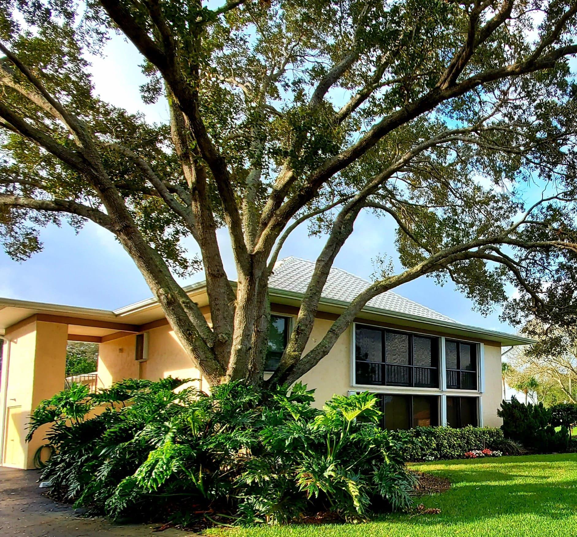 16 Turtle Creek Drive 16-A, Tequesta, Florida 33469, 3 Bedrooms Bedrooms, ,2 BathroomsBathrooms,F,Condominium,Turtle Creek,RX-10609501