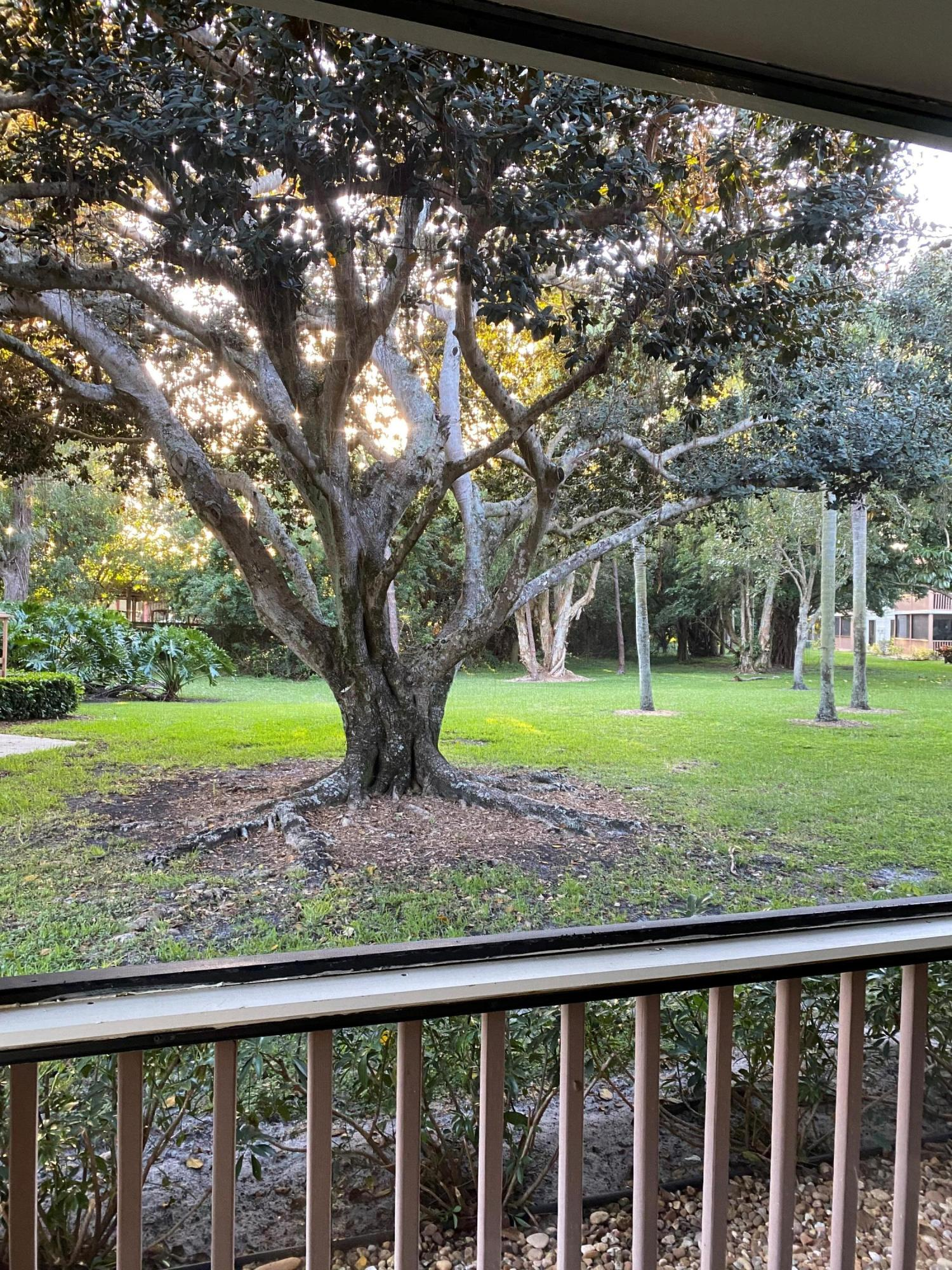 128 Brackenwood Road, Palm Beach Gardens, Florida 33418, 2 Bedrooms Bedrooms, ,2 BathroomsBathrooms,A,Condominium,Brackenwood,RX-10609872