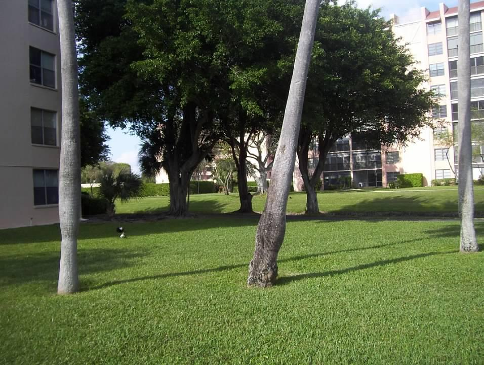14527 Bonaire Boulevard 609 Delray Beach, FL 33446 photo 40