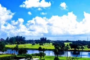 336  Golfview Road 511 For Sale 10616449, FL